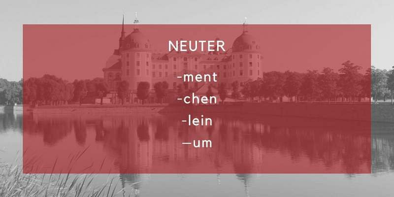 Đức neuter endings